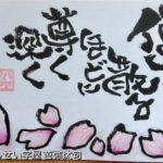 桜は美しい。でも他にも花は沢山あるけれどどうしてこんなに心を惹かれるのだろうか。